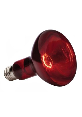 Лампа эл.250 Вт/красн./ИКЗК