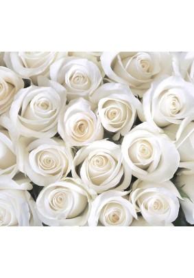 Декоративное панно Divino Розы белые В-091 3,00м х 2,70 м