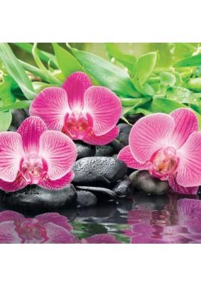 Панель ABS /3.0х0.6х0.0015м/Фартук Орхидеи Эпифиты